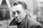 5914-Camus-2