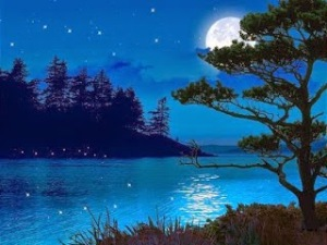Beauty-of-night-moonlight-picture-poetic-art-image